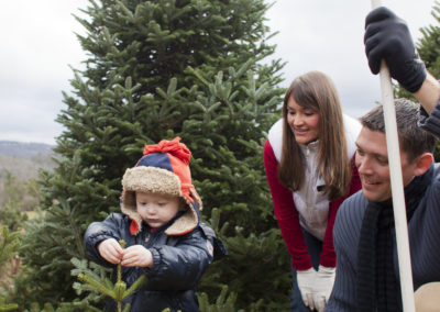 Matt Powell Productions.com- North Carolina Christmas Tree Association promo-documentary project.