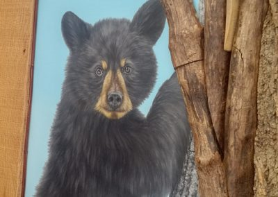 Cropped bear two